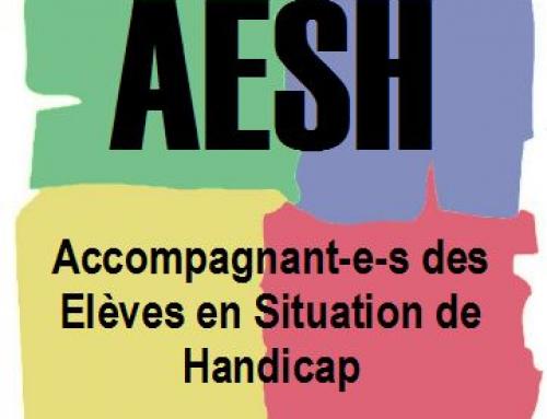 20 novembre : Pour les conditions de travail des AESH
